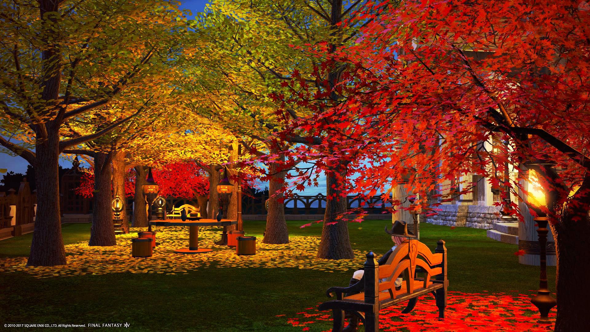 秋の庭(イチョウ並木)